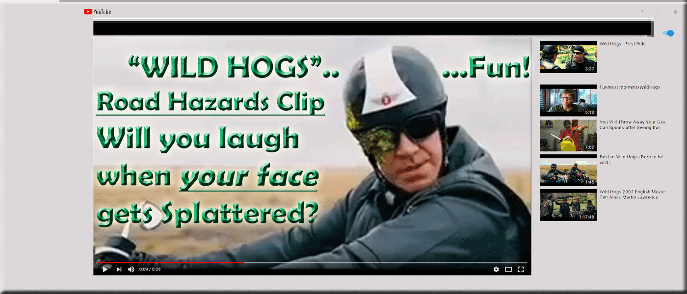 "The Open Road includes BUGS! (road hazard clip from ""Wild Hogs"" movie)"